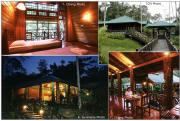 Photos of Lipad Cafe & Chalet Interior