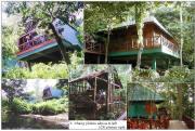 Photos of Chalets, Cabin Lodges & Tent Platform